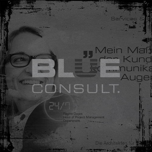 BLUE Consult